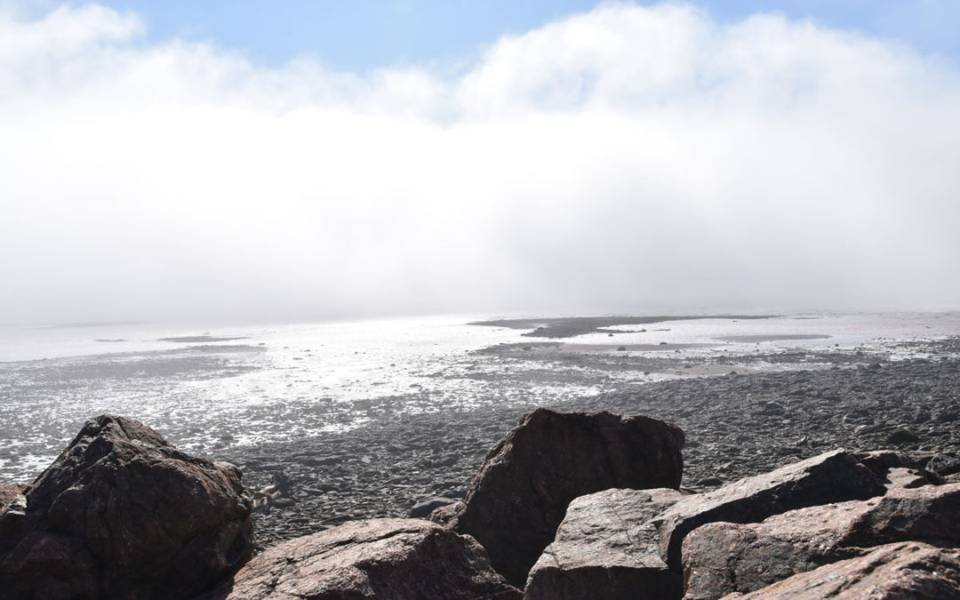 Sous la surface: Résidence au Parc national Fundy